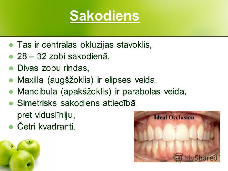 Sakodiens Tas ir centrālās oklūzijas stāvoklis, 28 – 32 zobi sakodienā, Divas zobu rindas, Maxilla (augšžoklis) ir elipses veida, Mandibula (apakšžoklis) ir parabolas veida, Simetrisks sakodiens attiecībā pret viduslīniju, Četri kvadranti.