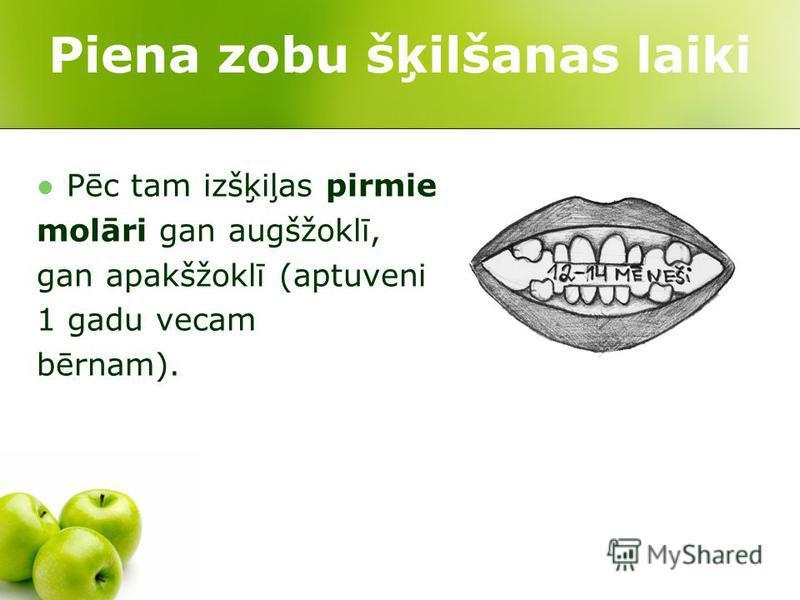 Piena zobu šķilšanas laiki Pēc tam izšķiļas pirmie molāri gan augšžoklī, gan apakšžoklī (aptuveni 1 gadu vecam bērnam).