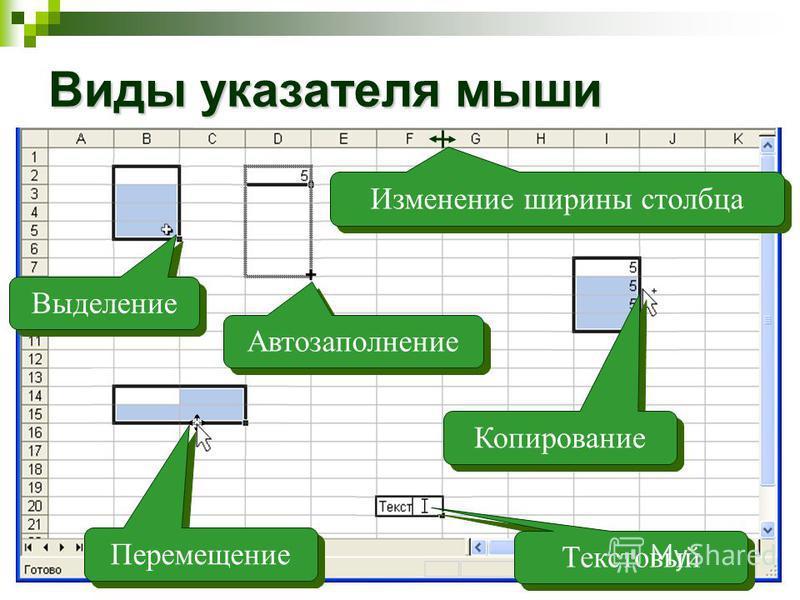 Виды указателя мыши Выделение Изменение ширины столбца Автозаполнение Перемещение Текстовый Копирование