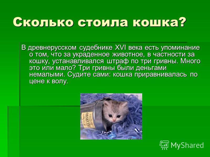 Сколько стоила кошка? В древнерусском судебнике ХVI века есть упоминание о том, что за украденное животное, в частности за кошку, устанавливался штраф по три гривны. Много это или мало? Три гривны были деньгами немалыми. Судите сами: кошка приравнива
