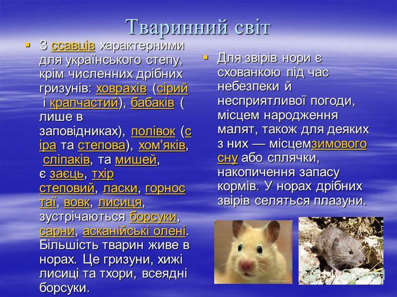 Тваринний світ З ссавців характерними для українського степу, крім численних дрібних гризунів: ховрахів (сірий і крапчастий), бабаків ( лише в заповідниках), полівок (с іра та степова), хом'яків, сліпаків, та мишей, є заєць, тхір степовий, ласки, гор