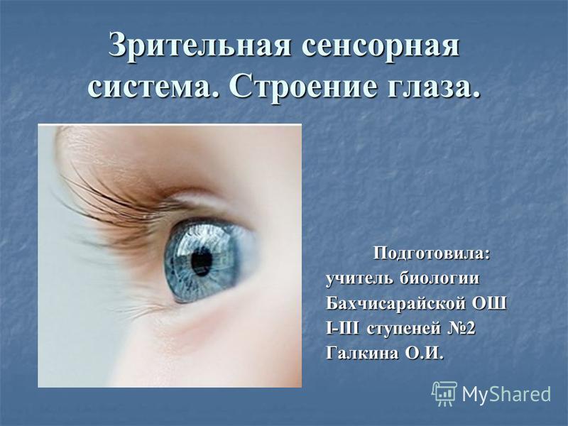 Зрительная сенсорная система. Строение глаза. Подготовила: учитель биологии Бахчисарайской ОШ I-III ступеней 2 Галкина О.И.