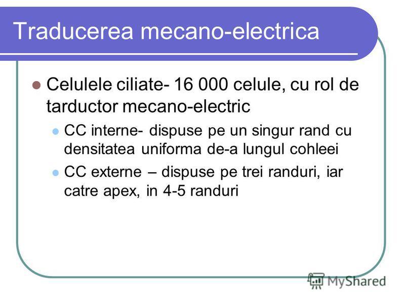 Traducerea mecano-electrica Celulele ciliate- 16 000 celule, cu rol de tarductor mecano-electric CC interne- dispuse pe un singur rand cu densitatea uniforma de-a lungul cohleei CC externe – dispuse pe trei randuri, iar catre apex, in 4-5 randuri