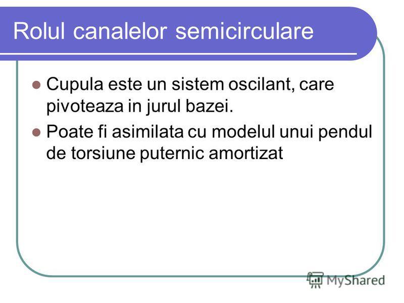 Rolul canalelor semicirculare Cupula este un sistem oscilant, care pivoteaza in jurul bazei. Poate fi asimilata cu modelul unui pendul de torsiune puternic amortizat