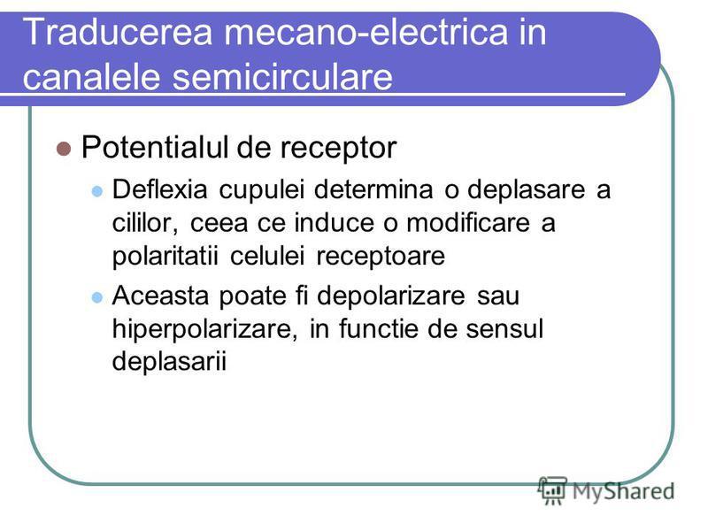 Traducerea mecano-electrica in canalele semicirculare Potentialul de receptor Deflexia cupulei determina o deplasare a cililor, ceea ce induce o modificare a polaritatii celulei receptoare Aceasta poate fi depolarizare sau hiperpolarizare, in functie