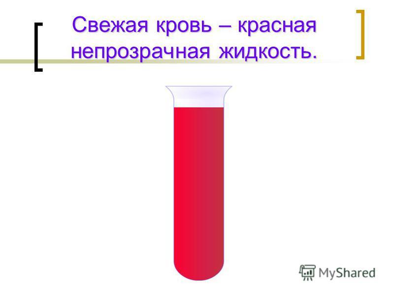 Свежая кровь – красная непрозрачная жидкость.