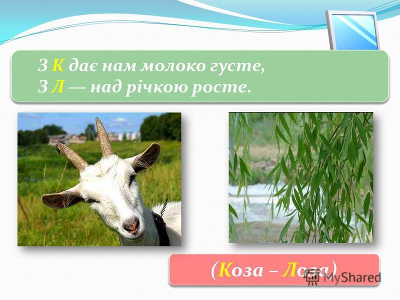3 Розгадай загадку З К дає нам молоко густе, З Л над річкою росте. З К дає нам молоко густе, З Л над річкою росте. (Коза – Лоза)
