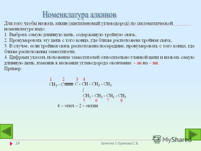 Занятие 1 Орехова С. В. 24