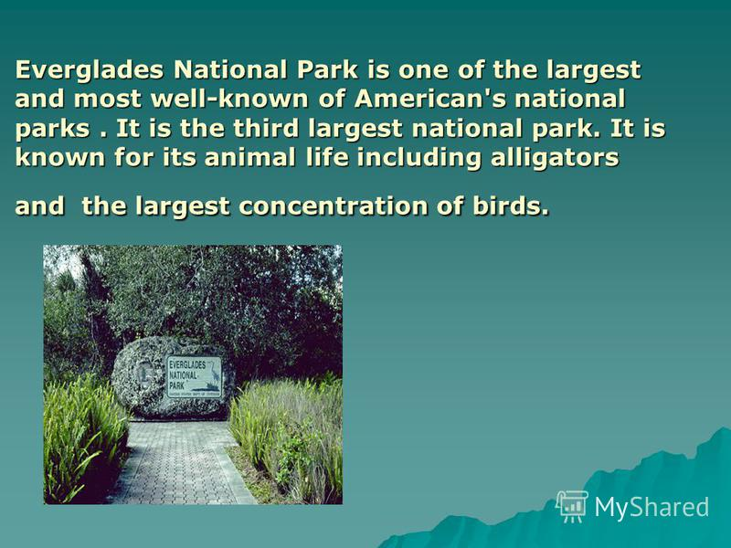 Everglades National Park is one of the largest and most well-known of American's national parks. It is the third largest national park. It is known for its animal life including alligators and the largest concentration of birds.