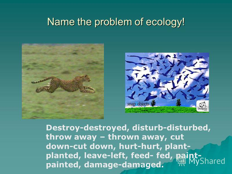 Name the problem of ecology! Destroy-destroyed, disturb-disturbed, throw away – thrown away, cut down-cut down, hurt-hurt, plant- planted, leave-left, feed- fed, paint- painted, damage-damaged.