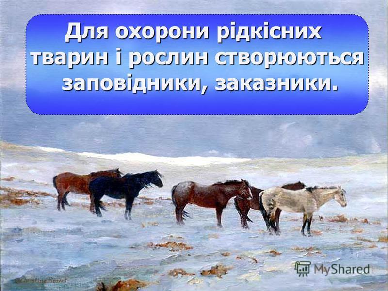 У 1980 році було видано Червону книгу України. Рослини і тварини, занесені до Червоної книги охороняються законом.