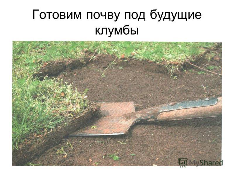 Готовим почву под будущие клумбы