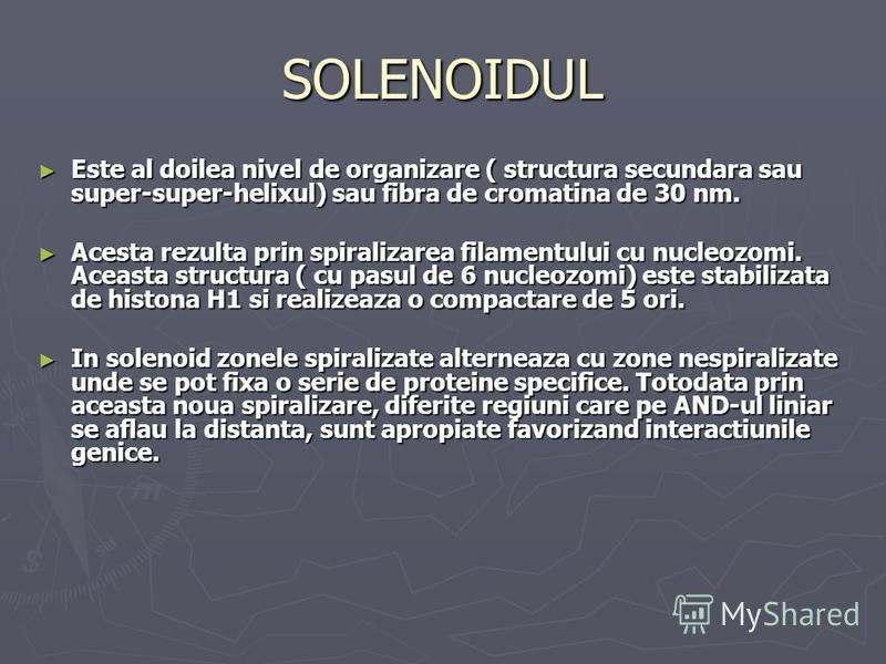 SOLENOIDUL Este al doilea nivel de organizare ( structura secundara sau super-super-helixul) sau fibra de cromatina de 30 nm. Este al doilea nivel de organizare ( structura secundara sau super-super-helixul) sau fibra de cromatina de 30 nm. Acesta re