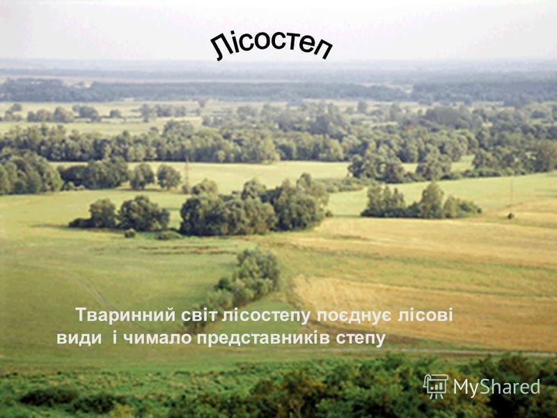 Тваринний світ лісостепу поєднує лісові види і чимало представників степу