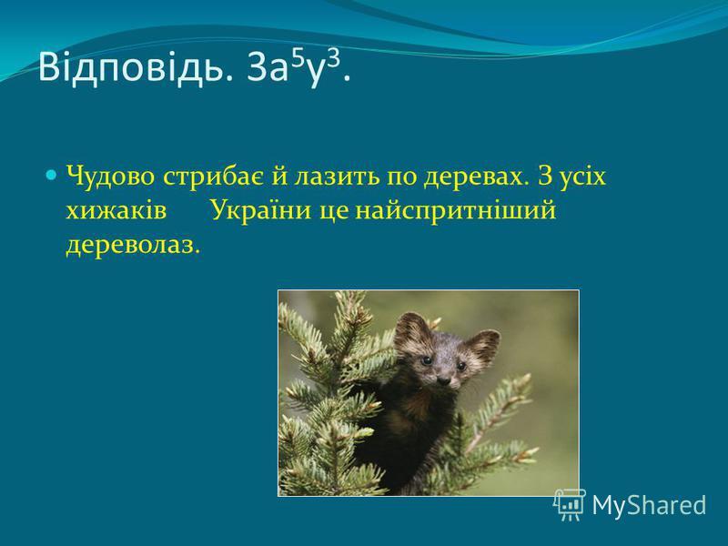 Відповідь. 3а 5 у 3. Чудово стрибає й лазить по деревах. З усіх хижаків України це найспритніший дереволаз.