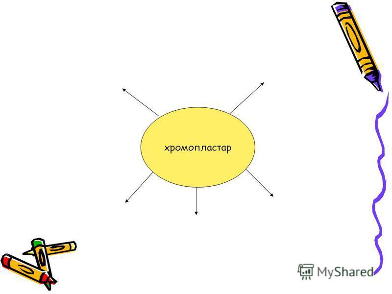 хромопластар