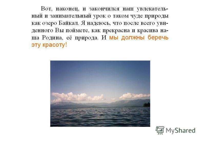 Животный мир озера Байкал (продолжение) Есть ли в Байкале млекопитающие? Единственный представитель млекопитающих - тюлень, или нерпа. По классификации нерпа байкальская относится к семейству настоящих тюленей, роду Pusa. Какой самый знаменитый вид о