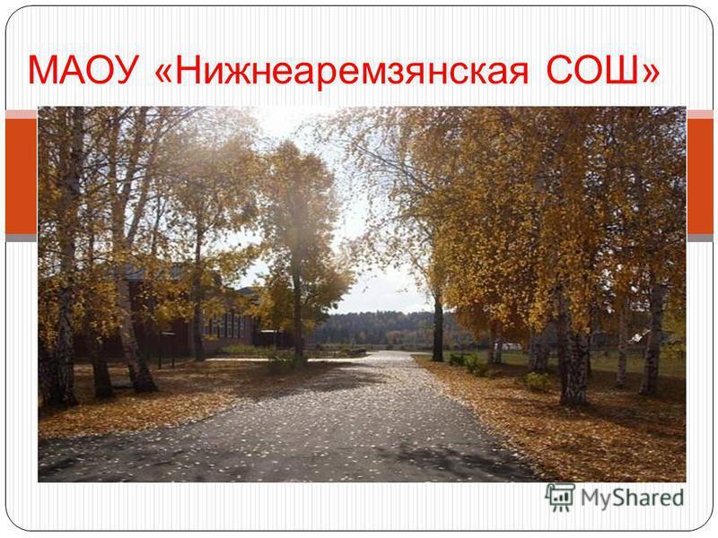 МАОУ «Нижнеаремзянская СОШ»