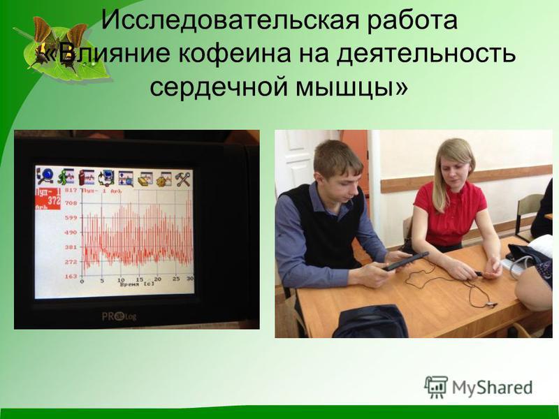 Исследовательская работа «Влияние кофеина на деятельность сердечной мышцы»