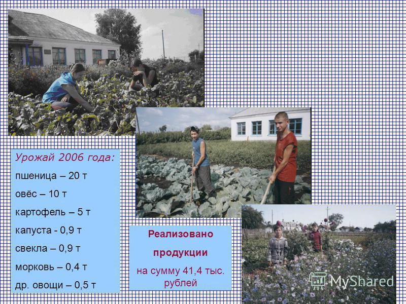 Урожай 2006 года: пшеница – 20 т овёс – 10 т картофель – 5 т капуста - 0,9 т свекла – 0,9 т морковь – 0,4 т др. овощи – 0,5 т Реализовано продукции на сумму 41,4 тыс. рублей