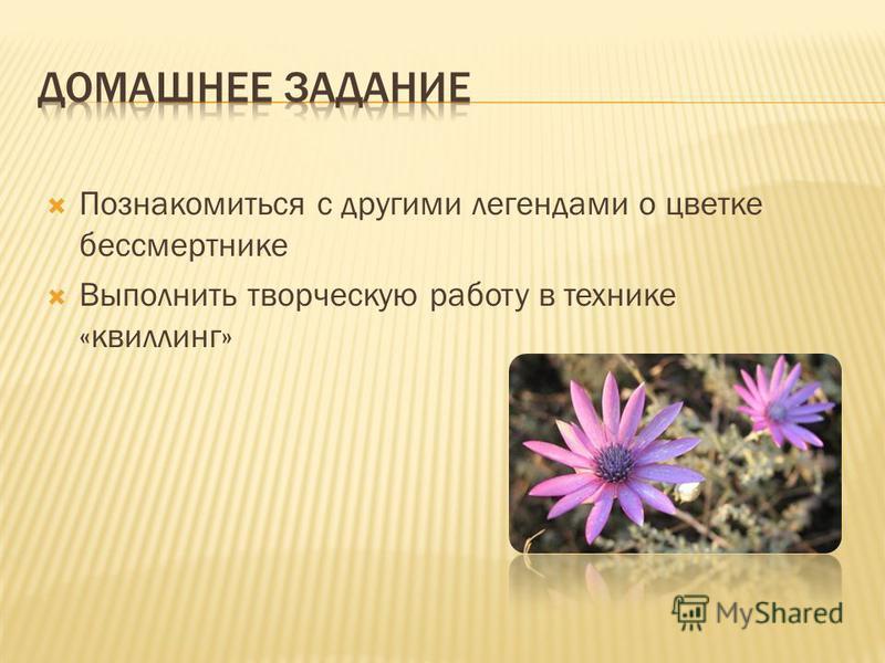 Познакомиться с другими легендами о цветке бессмертнике Выполнить творческую работу в технике «квиллинг»