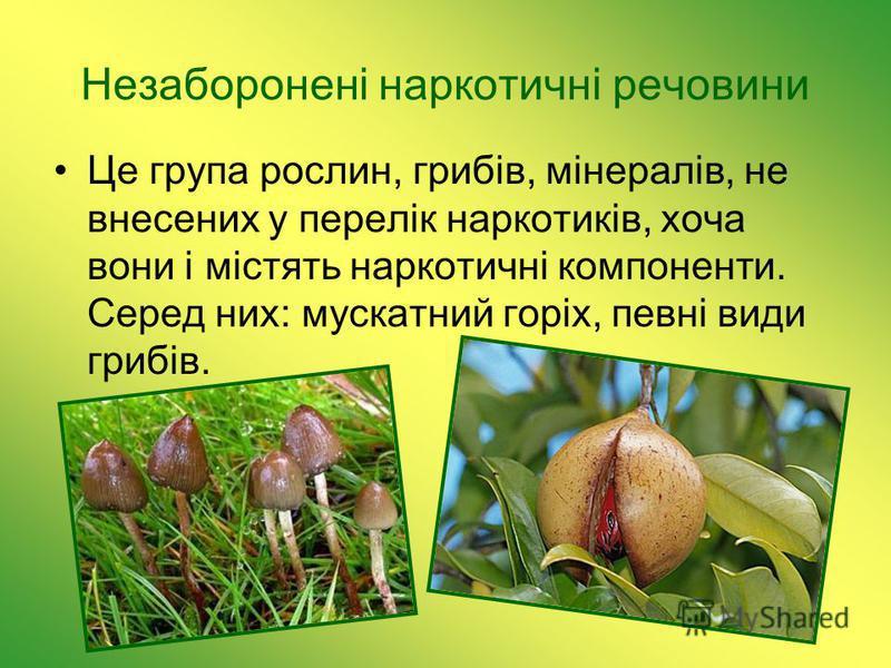 Незаборонені наркотичні речовини Це група рослин, грибів, мінералів, не внесених у перелік наркотиків, хоча вони і містять наркотичні компоненти. Серед них: мускатний горіх, певні види грибів.