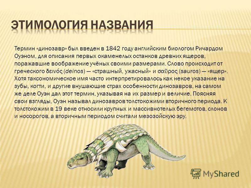Термин «динозавр» был введен в 1842 году английским биологом Ричардом Оуэном, для описания первых окаменелых останков древних ящеров, поражавшие воображение учёных своими размерами. Слово происходит от греческого δεινός (deinos) «страшный, ужасный» и
