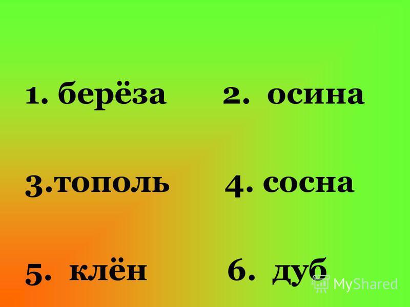 1. берёза 2. осина 3. тополь 4. сосна 5. клён 6. дуб