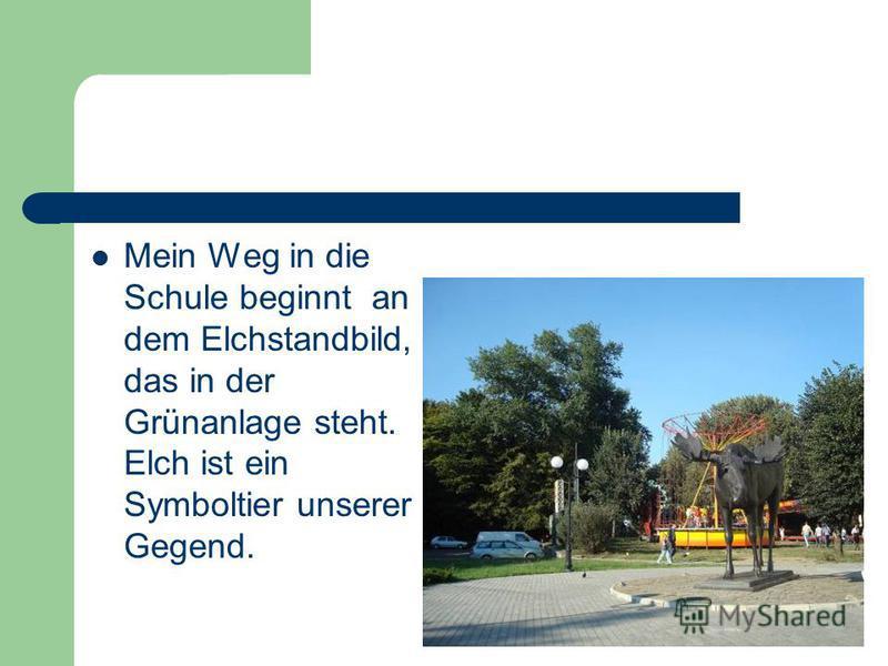 Mein Weg in die Schule beginnt an dem Elchstandbild, das in der Grünanlage steht. Elch ist ein Symboltier unserer Gegend.