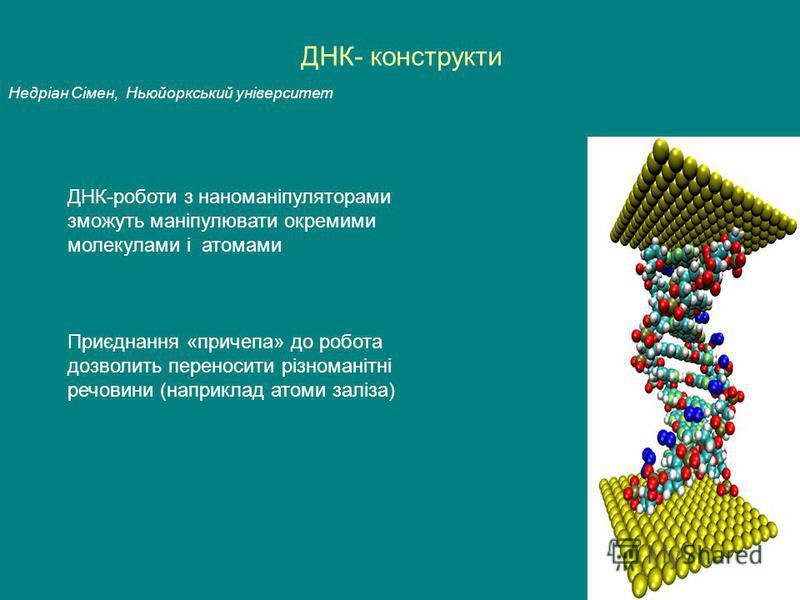 ДНК- конструкти Недріан Сімен, Ньюйоркський університет Приєднання «причепа» до робота дозволить переносити різноманітні речовини (наприклад атоми заліза) ДНК-роботи з наноманіпуляторами зможуть маніпулювати окремими молекулами і атомами