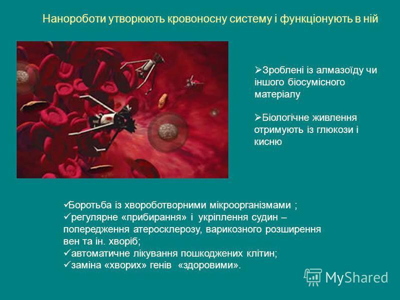 Нанороботи утворюють кровоносну систему і функціонують в ній Зроблені із алмазоїду чи іншого біосумісного матеріалу Біологічне живлення отримують із глюкози і кисню Боротьба із хвороботворними мікроорганізмами ; регулярне «прибирання» і укріплення су