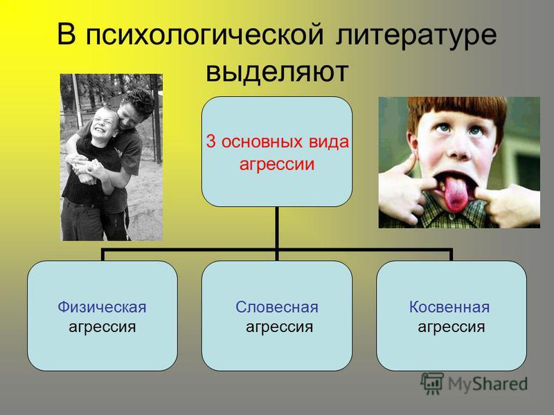В психологической литературе выделяют 3 основных вида агрессии Физическая агрессия Словесная агрессия Косвенная агрессия