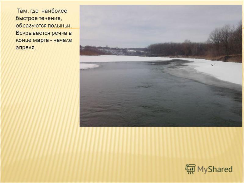 Там, где наиболее быстрое течение, образуются полыньи. Вскрывается речка в конце марта - начале апреля.