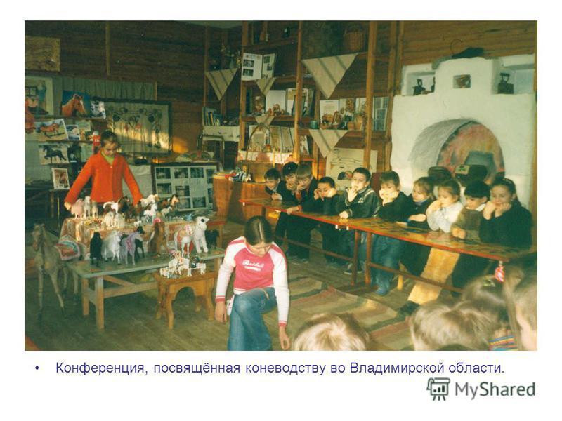 Конференция, посвящённая коневодству во Владимирской области.