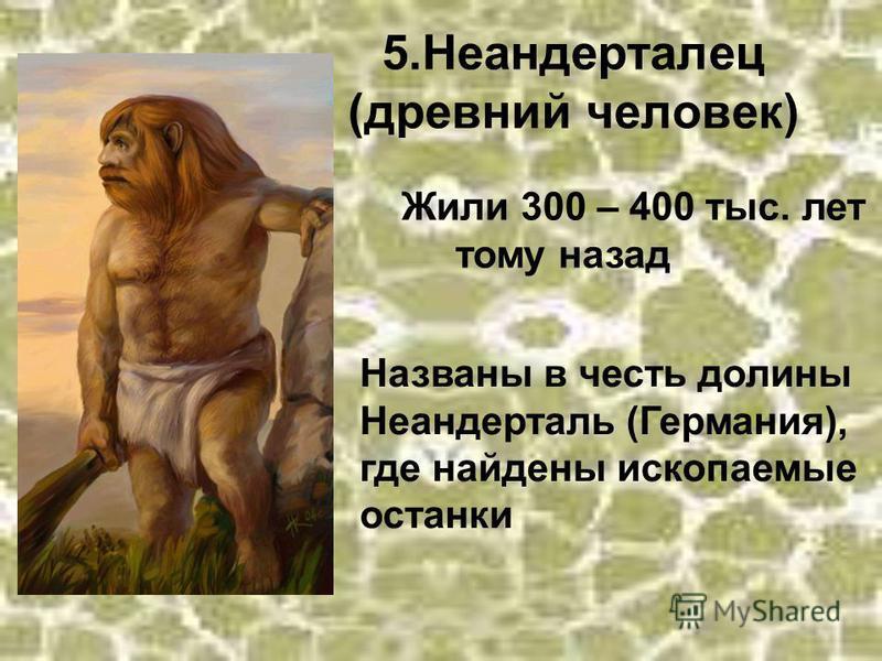 5. Неандерталец (древний человек) Жили 300 – 400 тыс. лет тому назад Названы в честь долины Неандерталь (Германия), где найдены ископаемые останки