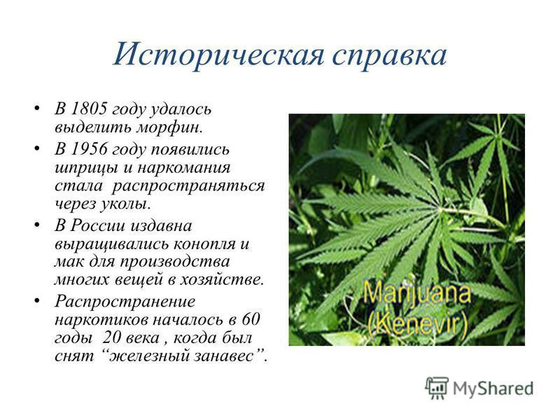 Историческая справка В 1805 году удалось выделить морфин. В 1956 году появились шприцы и наркомания стала распространяться через уколы. В России издавна выращивались конопля и мак для производства многих вещей в хозяйстве. Распространение наркотиков