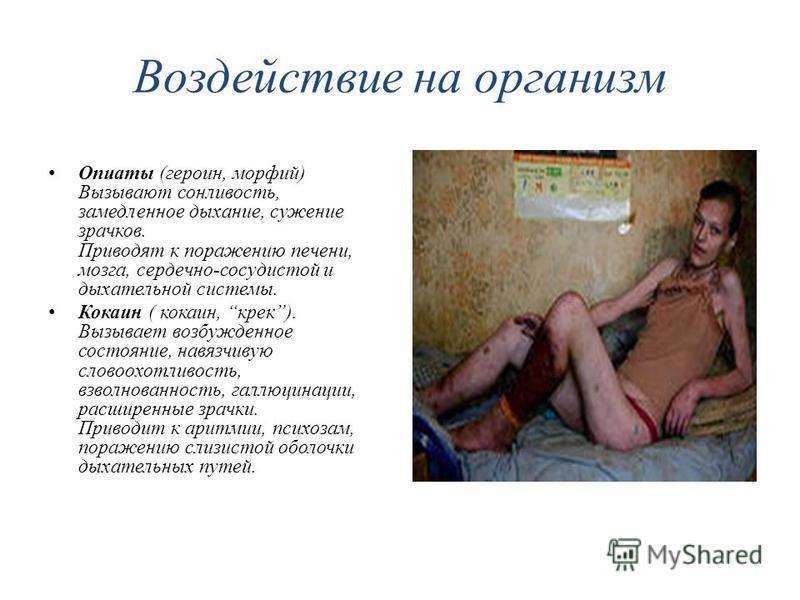 Воздействие на организм Опиаты (героин, морфий) Вызывают сонливость, замедленное дыхание, сужение зрачков. Приводят к поражению печени, мозга, сердечно-сосудистой и дыхательной системы. Кокаин ( кокаин, крэк). Вызывает возбужденное состояние, навязчи