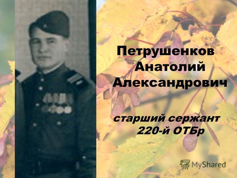 Петрушенков Анатолий Александрович старший сержант 220-й ОТБр