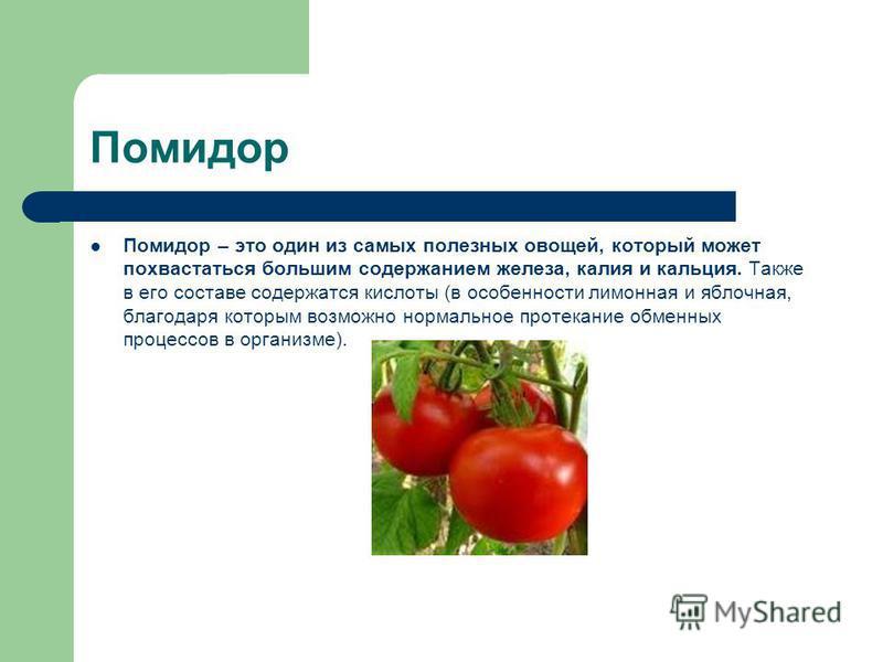 Помидор Помидор – это один из самых полезных овощей, который может похвастаться большим содержанием железа, калия и кальция. Также в его составе содержатся кислоты (в особенности лимонная и яблочная, благодаря которым возможно нормальное протекание о