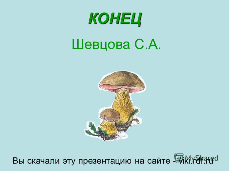 КОНЕЦ Шевцова С.А. Вы скачали эту презентацию на сайте - viki.rdf.ru