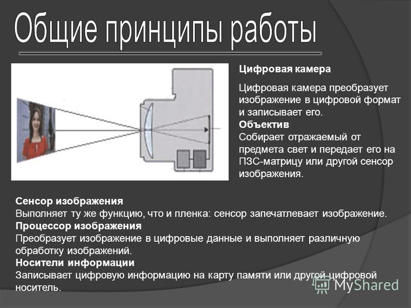 Сенсор изображения Выполняет ту же функцию, что и пленка: сенсор запечатлевает изображение. Процессор изображения Преобразует изображение в цифровые данные и выполняет различную обработку изображений. Носители информации Записывает цифровую информаци