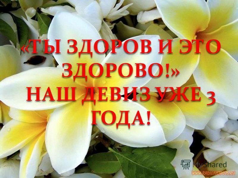 «ТЫ ЗДОРОВ И ЭТО ЗДОРОВО!» НАШ ДЕВИЗ УЖЕ 3 ГОДА!