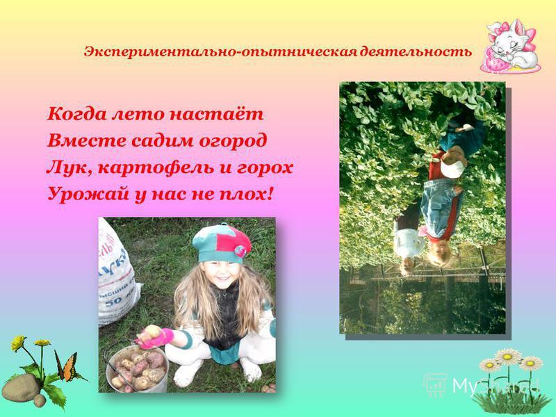 Экспериментально-опытническая деятельность Когда лето настаёт Вместе садим огород Лук, картофель и горох Урожай у нас не плох!