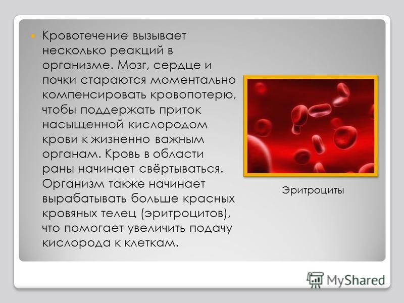 Кровотечение вызывает несколько реакций в организме. Мозг, сердце и почки стараются моментально компенсировать кровопотерю, чтобы поддержать приток насыщенной кислородом крови к жизненно важным органам. Кровь в области раны начинает свёртываться. Орг