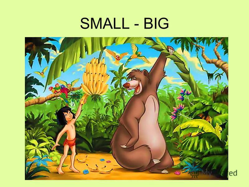 SMALL - BIG