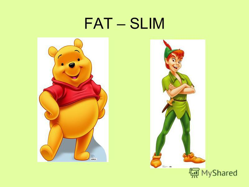 FAT – SLIM