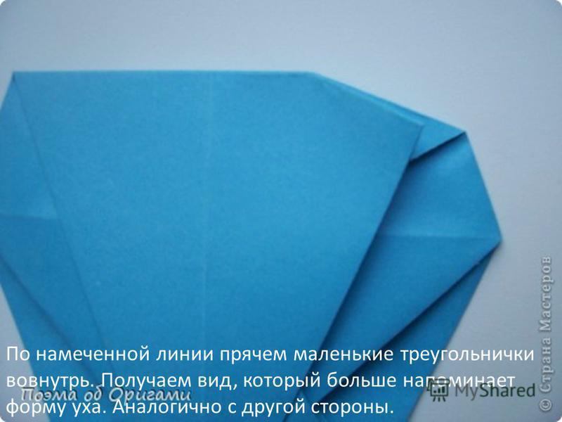 По намеченной линии прячем маленькие треугольнички вовнутрь. Получаем вид, который больше напоминает форму уха. Аналогично с другой стороны.