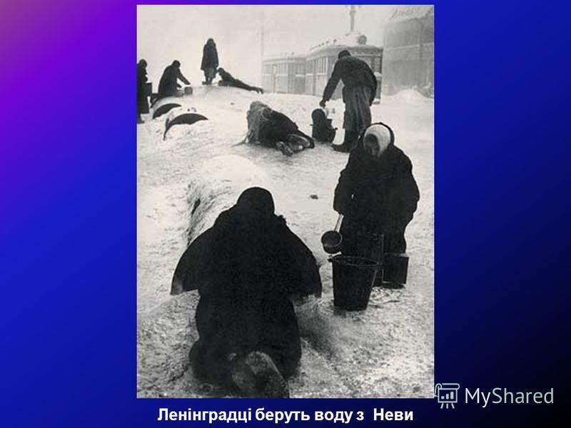 Ленінградці беруть воду з Неви