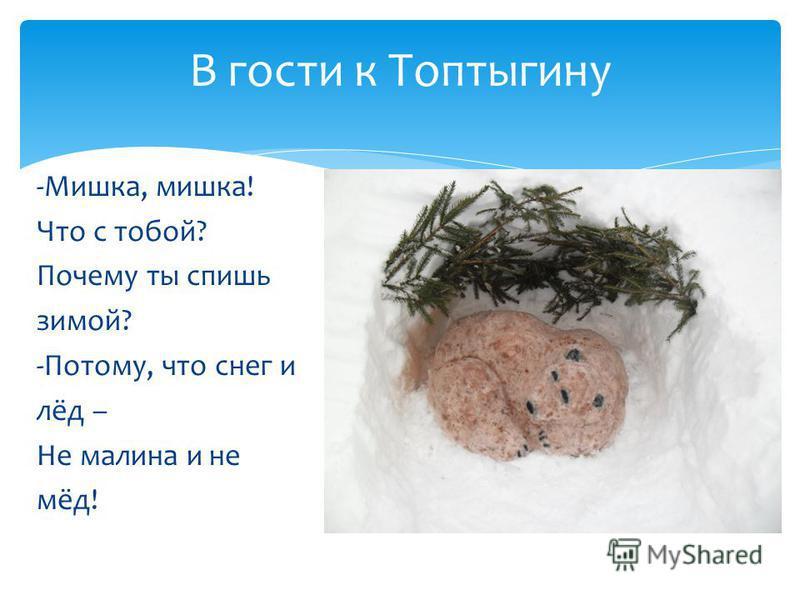 В гости к Топтыгину -Мишка, мишка! Что с тобой? Почему ты спишь зимой? -Потому, что снег и лёд – Не малина и не мёд!