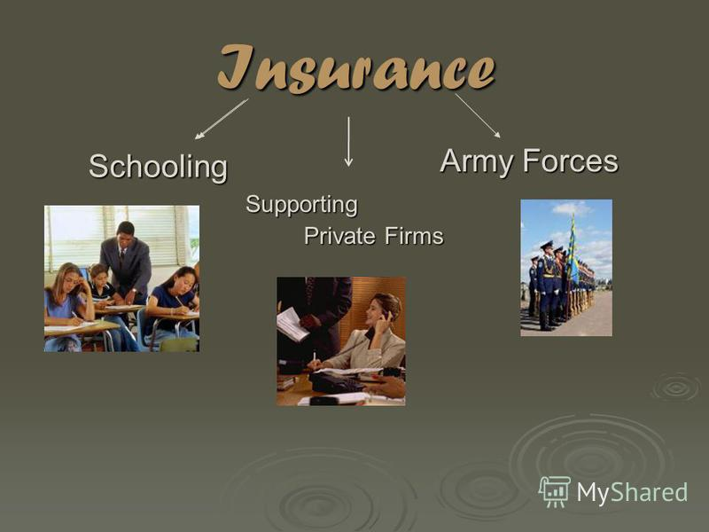 Insurance Supporting Private Firms Private Firms Army Forces Schooling